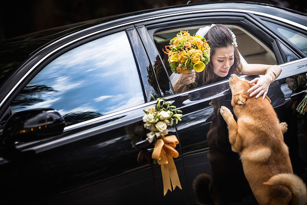 creative-best-wedding-photography-awards-2014-ispwp-contest-9.jpg
